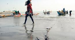 África sufre ahora el expolio del mar