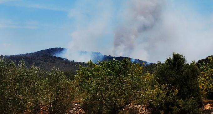 El fuego convierte el pulmón de Valencia en un desierto