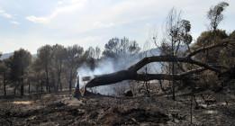 Valencia, arrasada por las llamas por culpa de los recortes