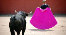 """El Constitucional declara """"legales"""" las corridas de toros en Francia"""