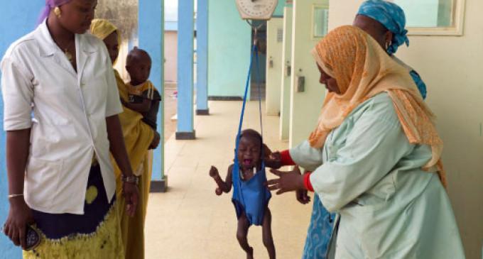 La desnutrición afecta a 870 millones de personas, según la FAO