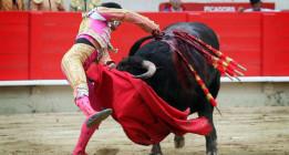 Los toros vuelven a Morón de la Frontera en medio de la polémica