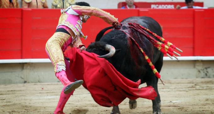 La afición a las corridas de toros baja un 37% en solo cinco años