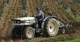 El Gobierno fomenta la fusión entre cooperativas agroalimentarias