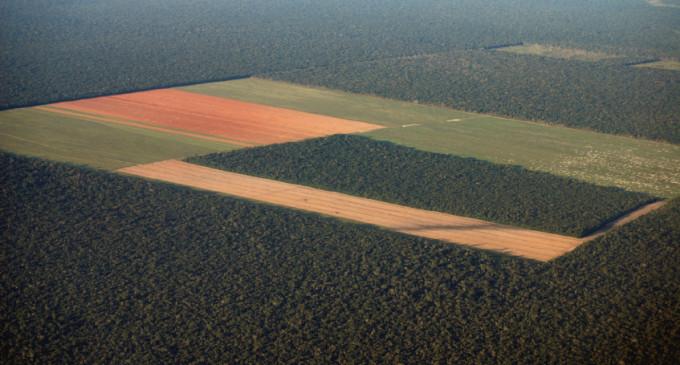 La mala gestión de cultivos ahoga los ecosistemas de Latinoamérica