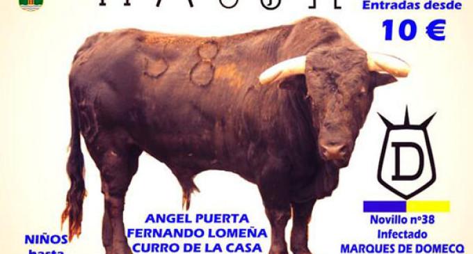 Un ayuntamiento de Guadalajara promociona las corridas de toros en los colegios