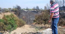 El 55% de los incendios es intencionado