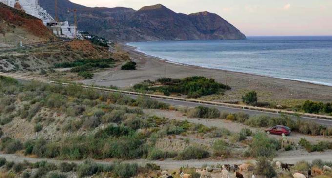 El exalcalde de Carboneras señala a la Junta de Andalucía como responsable del Algarrobico