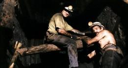 <em>Carbón, sudor y lágrimas: la historia de aquellos que pueden contarlo</em>