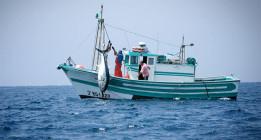 La UE ultima un nuevo acuerdo de pesca con Marruecos de dudosa legalidad