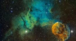 Los diez descubrimientos científicos del año