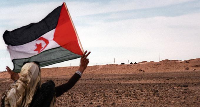 <em>Los marroquíes críticos y el conflicto del Sáhara</em>
