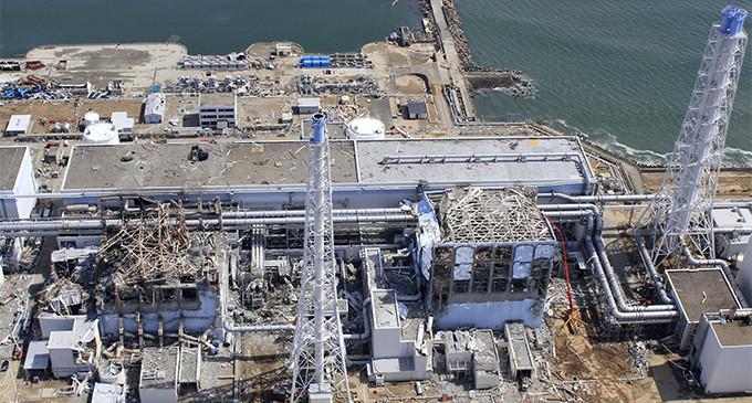 <em>La advertencia de Fukushima: una lección para el resto del mundo</em>