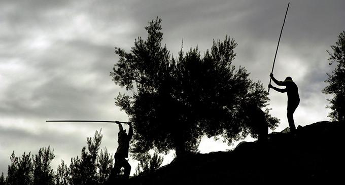 De Aigues Mortes a Villacarrillo: El fascismo que nace del odio entre obreros