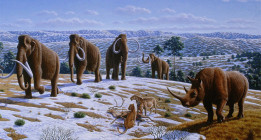 El marco paleoambiental de la prehistoria reciente en Iberia
