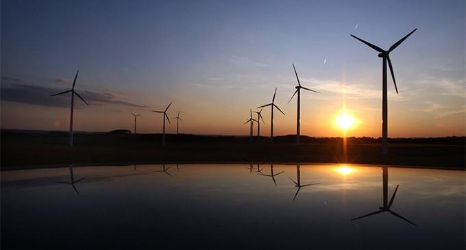 Las cinco grandes ONG ambientales presentan 14 propuestas para las elecciones europeas