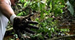 """Un tribunal de EEUU tacha de """"corrupta"""" la sentencia de Ecuador contra Chevron"""