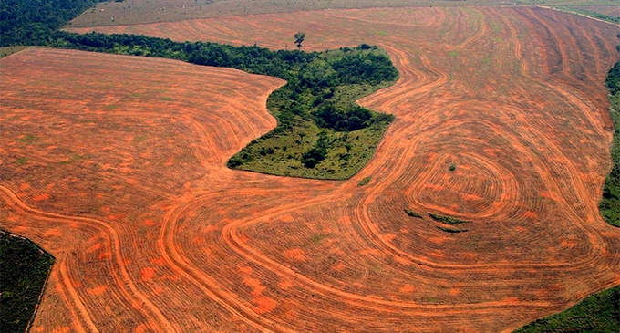 BRAZIL AMAZON DESTRUCTION
