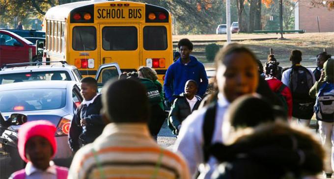 <em>La raza importa: el regreso de la segregación en la educación pública estadounidense</em>