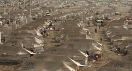 En este Día de Acción de Gracias los refugiados no son bienvenidos en la mesa estadounidense