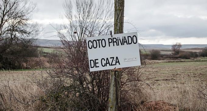 Cotos de caza m s privados que nunca iniciativa debate - Articulos de caza milanuncios ...