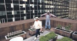 Colmenas urbanas para paliar los efectos de la extinción de las abejas