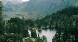 El PP desoye a los ecologistas y saca adelante su nueva Ley de Parques Nacionales