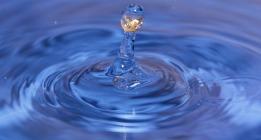 Homeopatía: Agua y Azúcar