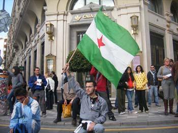 Un joven, con la bandera de Andalucía. I La Marea