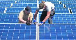 Las cooperativas buscan su sitio en el empleo verde