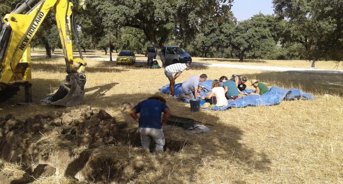 Encuentran los cuerpos de una familia en una fosa en Alcalá del Valle