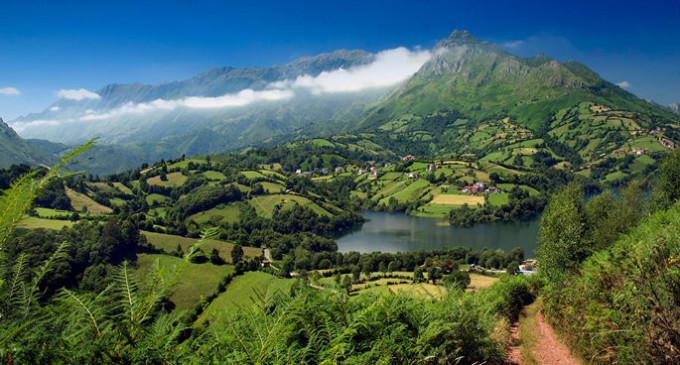 Ecologistas advierte de que España no va a cumplir los objetivos de biodiversidad
