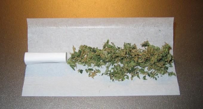 Los clubes de cannabis, contra las cuerdas
