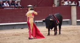 El lento avance hacia una España sin tauromaquia