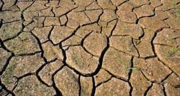 Fuera de juego: el cambio climático podría dejarnos sin Juegos Olímpicos en el futuro cercano