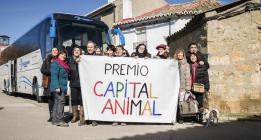 """Trigueros del Valle, premiada por declarar """"vecinos no humanos"""" a los animales"""
