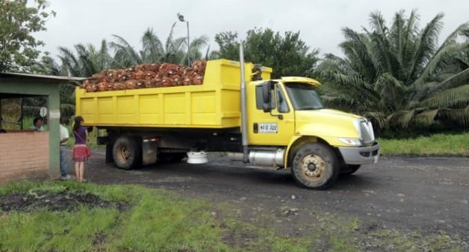 Colombia: primeros apuntes del viaje para investigar el aceite de palma