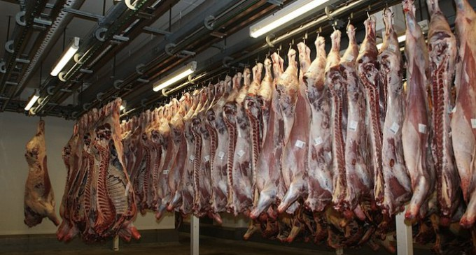 El lobby español de la carne pagó estudios para contradecir a la OMS