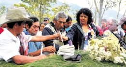 Más que violencia, Honduras es deterioro profundo