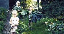 Dinamarca apuesta por la agricultura ecológica