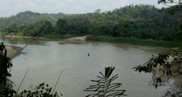 Aceite de palma en Indonesia: la batalla por el agua