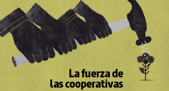 Dossier #LaMarea41: La fuerza de las cooperativas