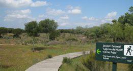 La Junta regulariza 400 nuevas hectáreas en Doñana