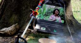 El 65% de los asesinatos a defensores del medio ambiente se produce en América Latina