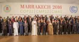 Cop22: ecologistas frustrados y empresarios felices en el día de la foto