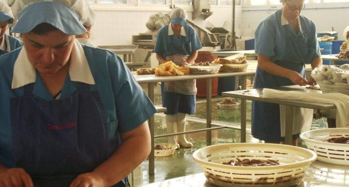 'Sobadoras de anchoa': memorias de las trabajadoras de Santoña