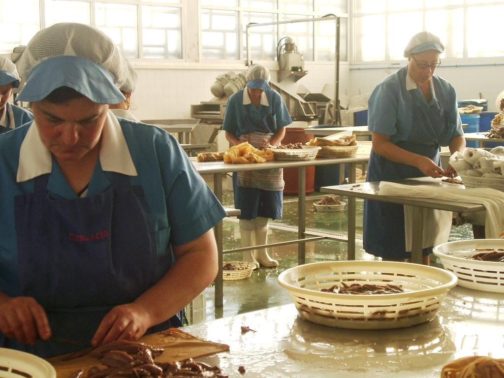Sobadoras de anchoa en una fábrica de Santoña (2005)