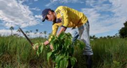 Noticias climáticas de la semana: la compra-venta de derechos de contaminación