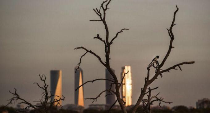 La lucha contra el cambio climático: España debe pasar a la acción
