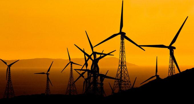 El Parlamento Europeo fija en el 35% el objetivo de renovables para 2030